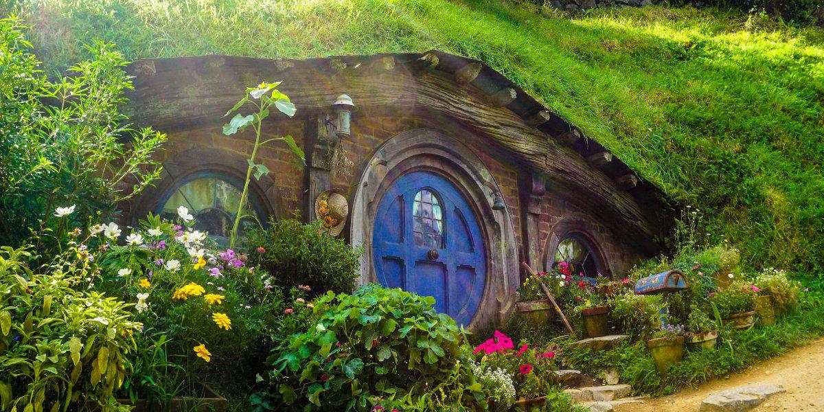 house under grass - Rezensionen